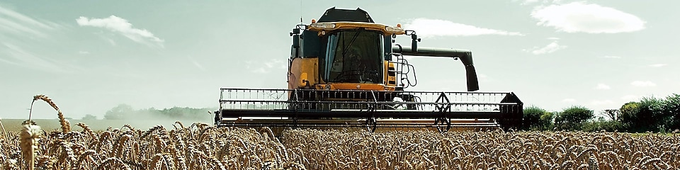 Yellow combine harvester in a wheat field
